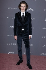 Timothee Chalamet LACMA: Art and Film Gala, Arrivals, Los Angeles, USA - 04 Nov 2017 WEARING GUCCI